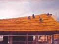 103 Trenzado Construcción Almeria
