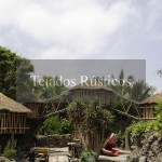 079-teja-tropical-loro-parque